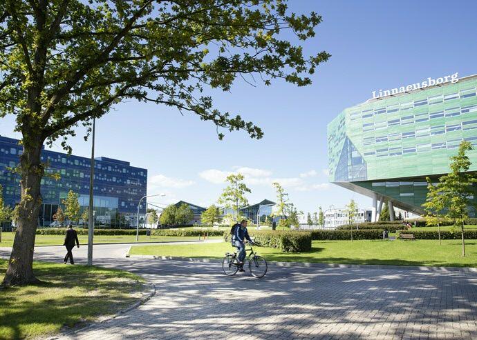 Herinrichting Zernike Campus, Een Groene Centrale As