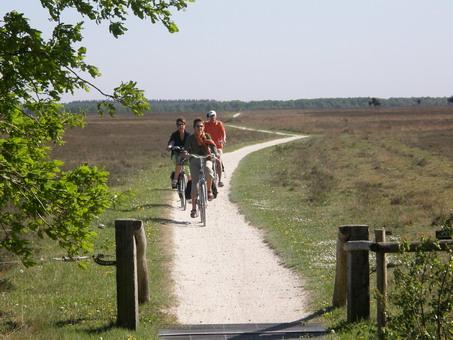CORONANIEUWS: Mogelijk blijven we meer fietsen en lopen