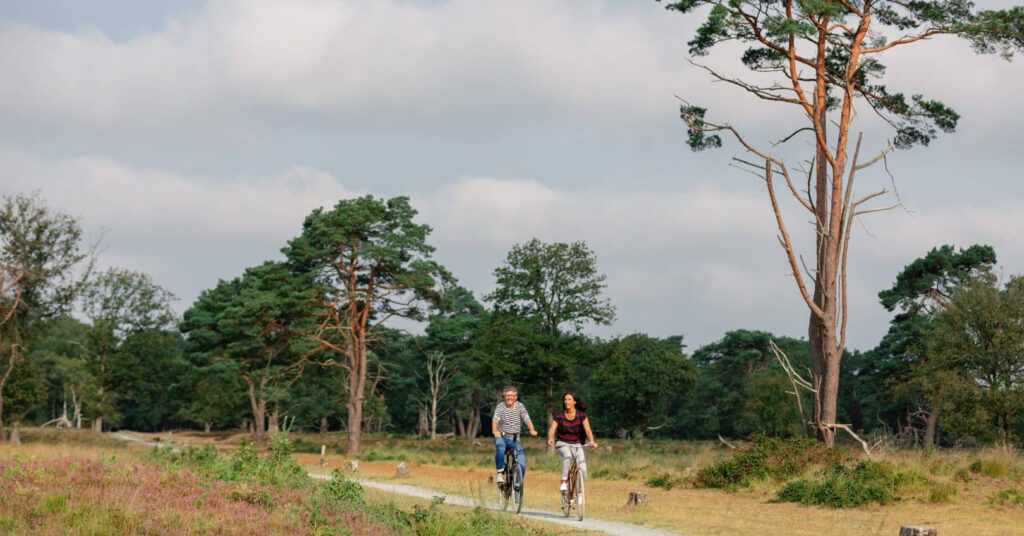 GGD Drenthe Nationaalpark-Dwingelderveld1200x628